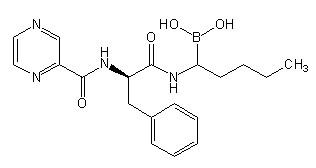 Bortezomib Impurity C