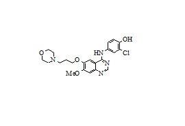 4-Defluoro-4-hydroxy Gefitinib