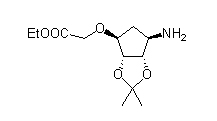 Ticagrelor Intermediate 4