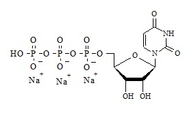 Uridine-5′-triphosphate Trisodium Salt