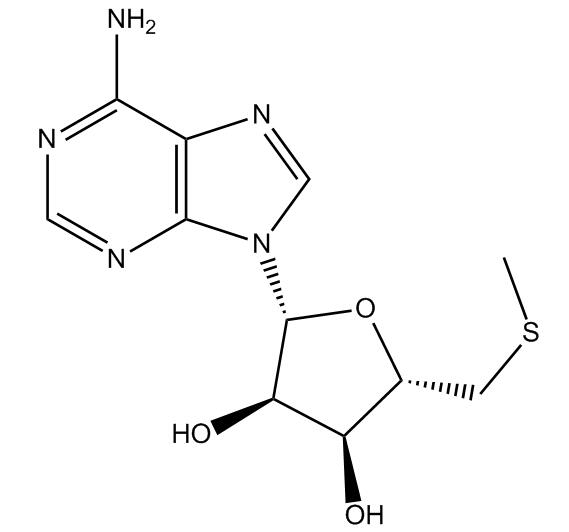 5'-S-Methyl-5'-Thioadenosine